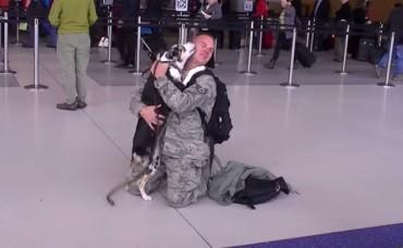 Ez a katona éppen hazatért, a repülőtéren hatalmas meglepetés érte! – VIDEÓ