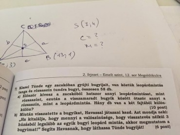 Kiszel Tünde fejezet lett egy emelt szintű matematika könyvben.