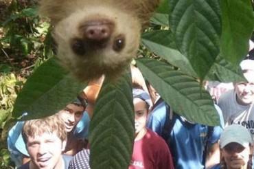 18 rettentő poénos állatos fotóbomba és egy ijesztő