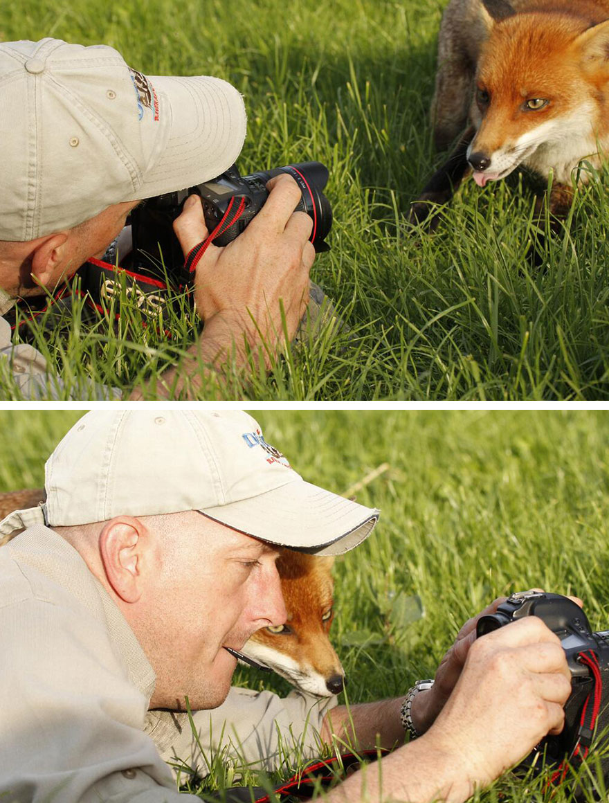 animals-with-camera-helping-photographers-1