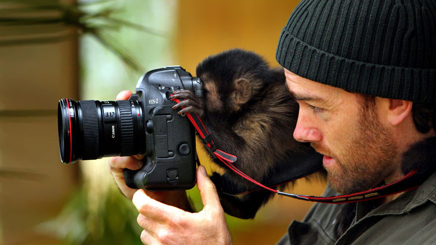 animals-with-camera-helping-photographers-5