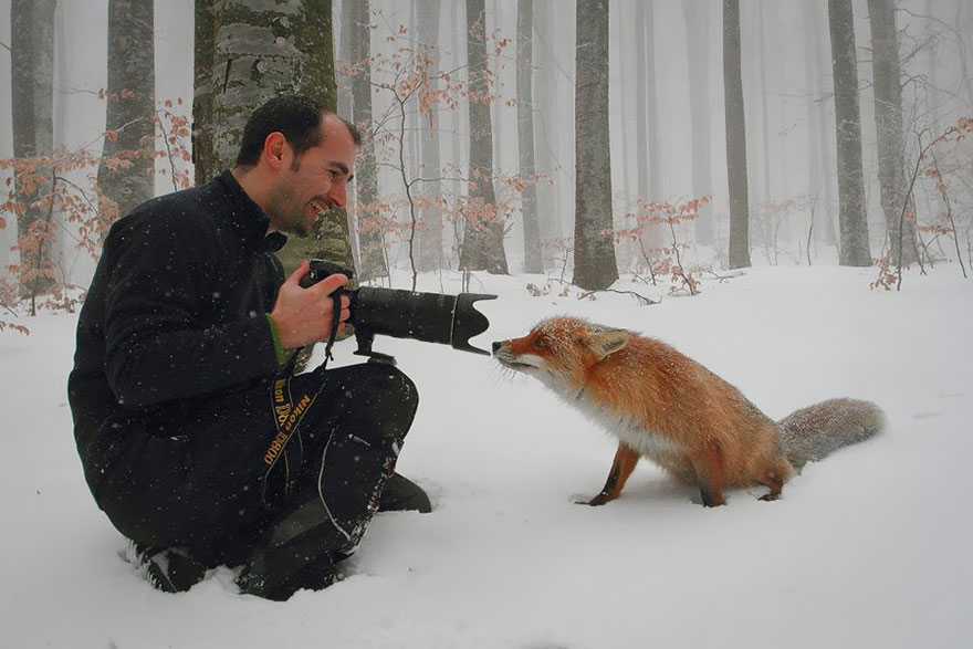 animals-with-camera-helping-photographers-6