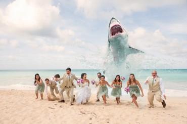 21 vicces kép a tengerpartról