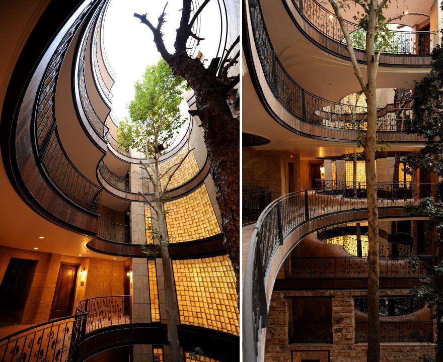 architecture-around-the-trees-10__880
